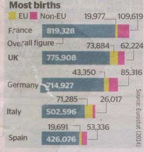 Immigrant birth rates